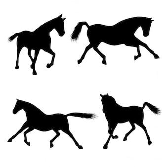 Silhouetten van paarden in verschillende poses
