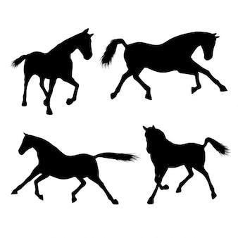 Silhouetten van paarden
