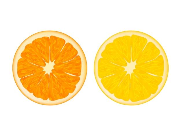 Sinaasappel en citroen. realistische stijl. geïsoleerd op wit.