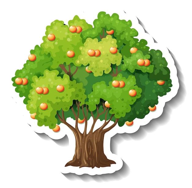 Sinaasappelboom sticker op witte achtergrond