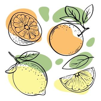 Sinaasappels en citroenen en helften schetsen met pastel oranje en gele kleur spatten illustraties