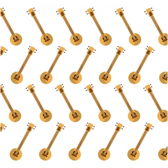 Sitar indiase muziekinstrument