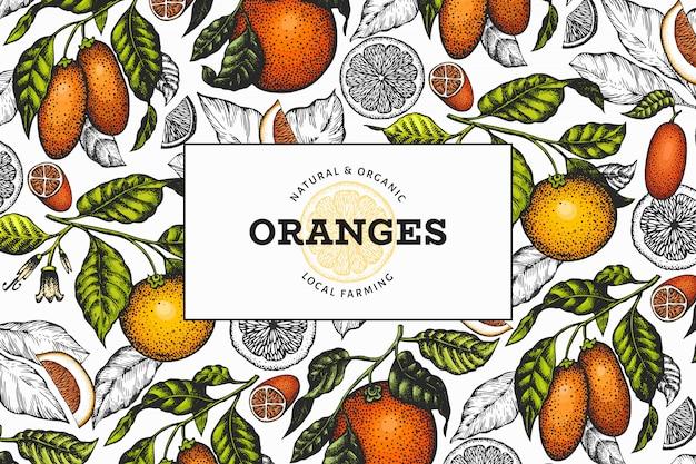 Sjabloon voor hand getrokken sinaasappelen illustratie