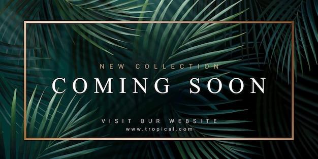 Sjabloon voor spandoek nieuwe collectie met palmbladeren