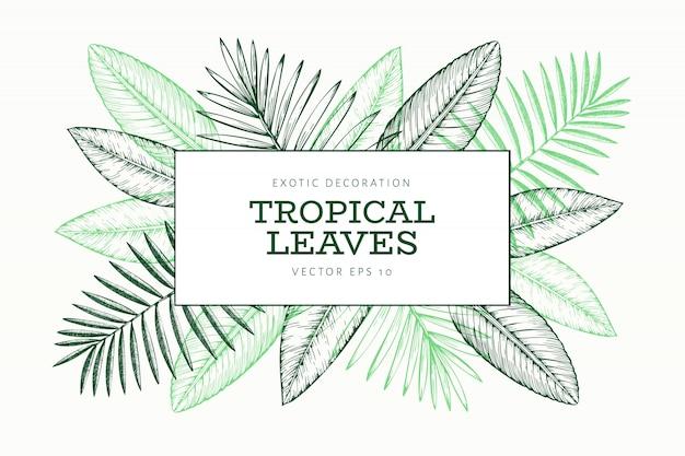 Sjabloon voor spandoek tropische planten
