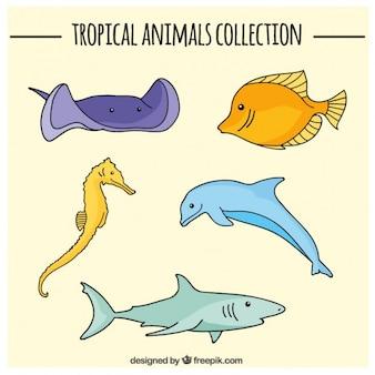 Sketches gekleurde vissen set