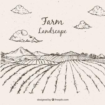 Sketches landbouw landschap
