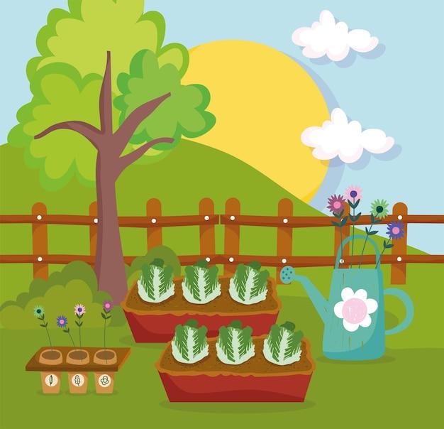 Sla en planten water geven