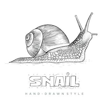 Slak hand getekend dier illustratie