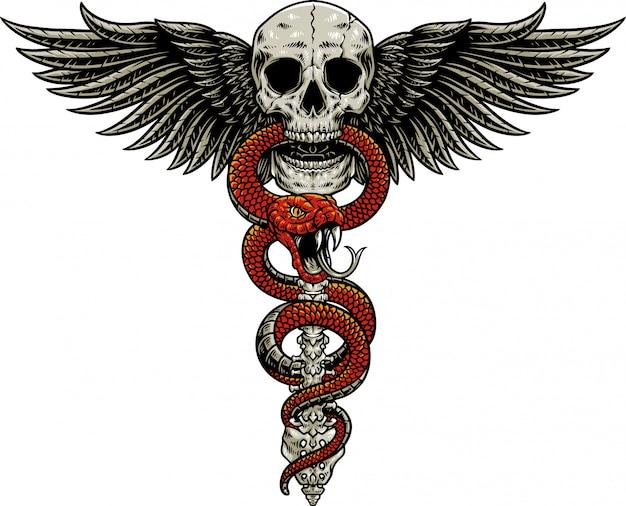 Slang schedel