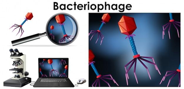 Sluit omhoog geïsoleerd voorwerp van virusbacteriofaag Gratis Vector