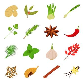 Specerijen ambachtelijke pictogrammen instellen
