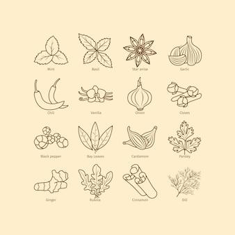 Specerijen en kruiden lijn pictogrammen instellen
