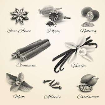 Specerijen instellen zwart en wit