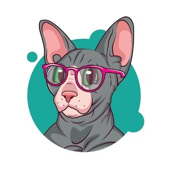 Sphynx kat met een bril
