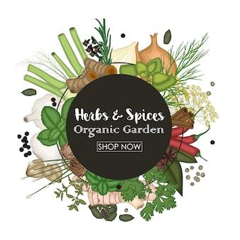 Spice en kruid ronde frame achtergrond