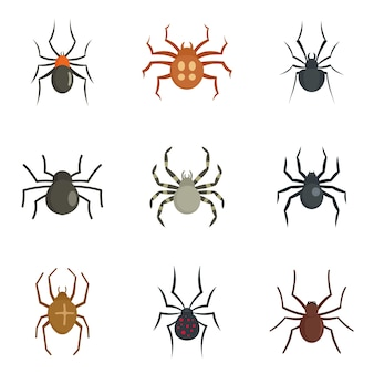 Spider bug caterpillar icons set