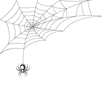 Spider web behang