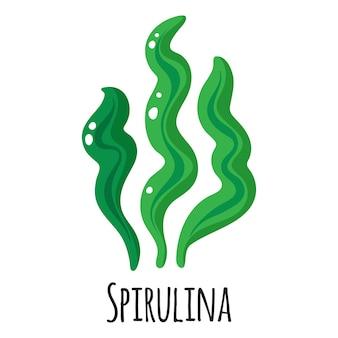 Spirulina superfood zeewier voor sjabloon boerenmarkt ontwerp, etiket en verpakking. natuurlijke energie-eiwit biologische voeding.