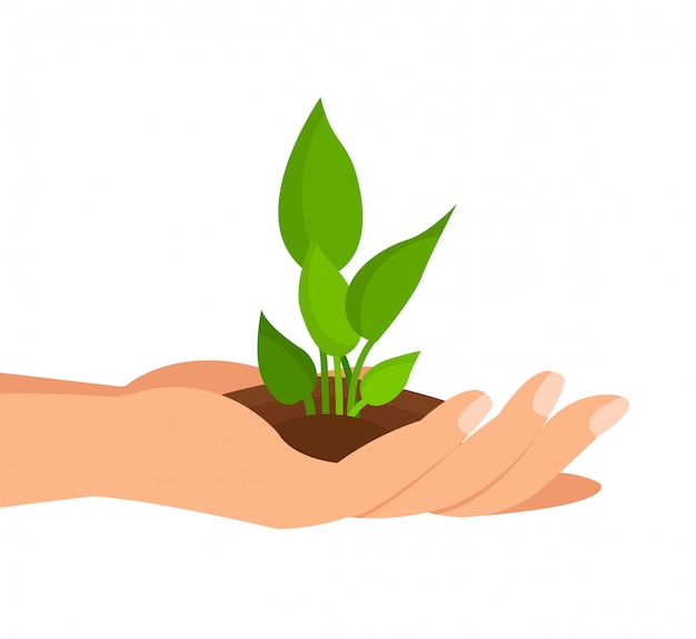 Sprout in palm flat color geïsoleerde illustratie