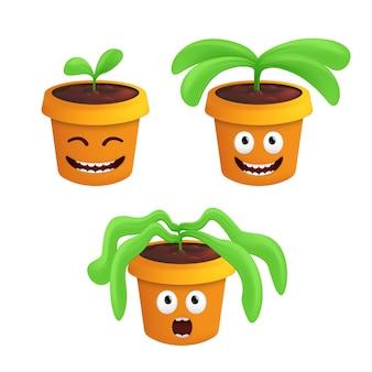 Stadia van groei en verwelking van een kamerplant in een pot.