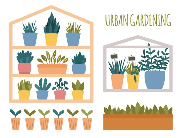 Stadstuinieren set met potplanten elementen. groene mini-huis met potten, doos en kopjes met spruit en zaailing. platte cartoon scandinavische stijl. illustratie geïsoleerd op een witte achtergrond Premium Vector