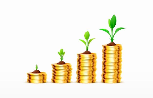 Stapels van toenemende munten gouden munten op witte achtergrond vector