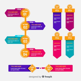 Stappen professionele infographic