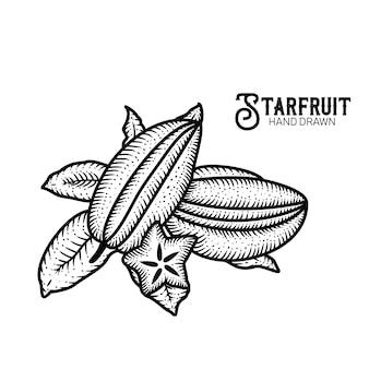 Starfruit hand getrokken