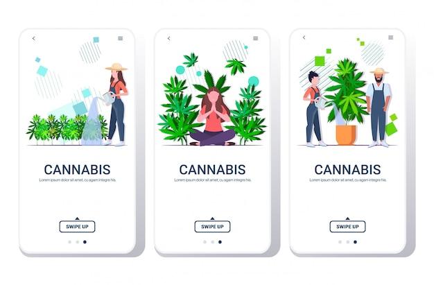 Stel banners boeren water geven cannabis meisje genietend van verdovende werking,