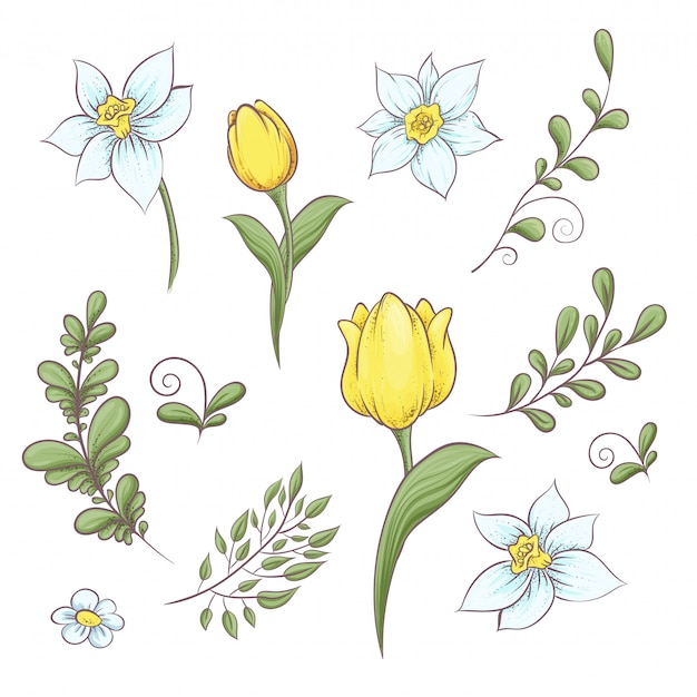 Stel bloemen tulpen