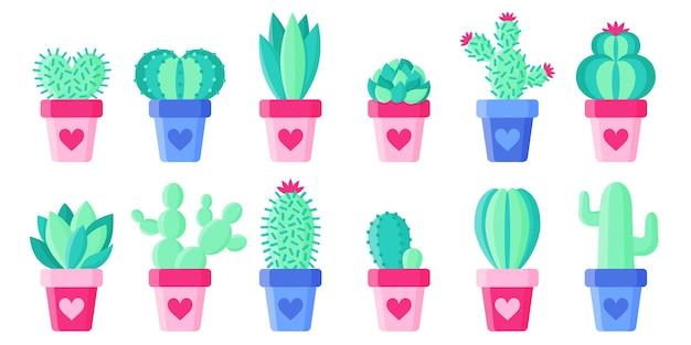 Stel bloempotten in met cactussen en vetplanten.