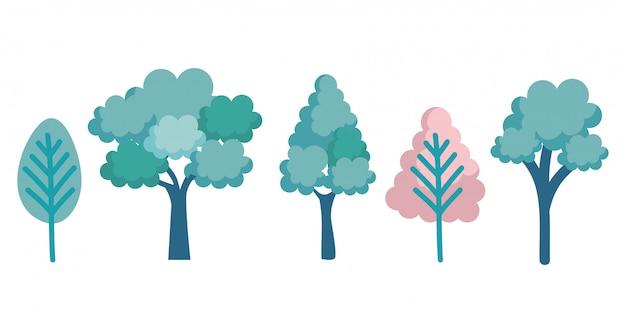 Stel bomen bos pictogrammen