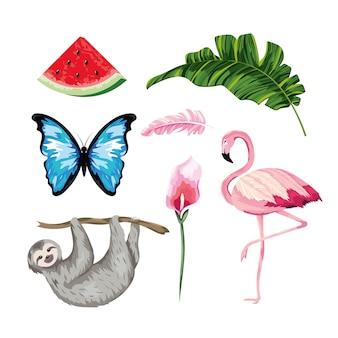 Stel dieren met tropische watermeloen en bladeren met blad