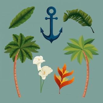 Stel exotische palmbomen met bladeren en bloemen