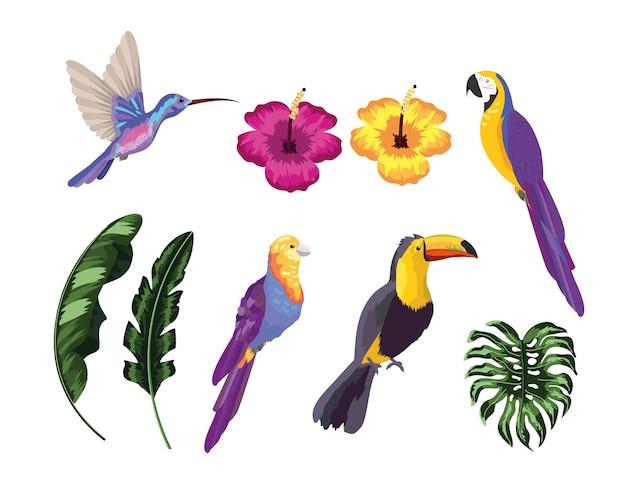 Stel exotische vogels met natuurlijke bladeren
