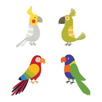 Stel heldere papegaaien in.