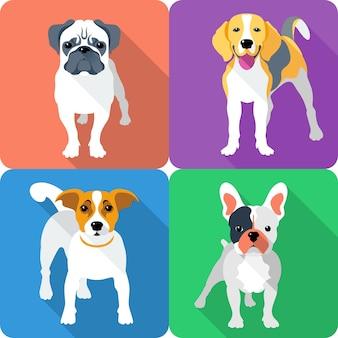 Stel hond pictogram plat ontwerp mops en beagle ras