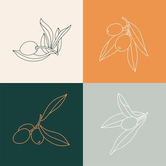 Stel illustratie olijftak - eenvoudige lineaire stijl. olijven pictogrammen.
