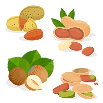 Stel pictogrammen noten en zaden