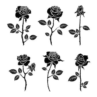 Stel rozen bloemen geïsoleerd op een witte achtergrond