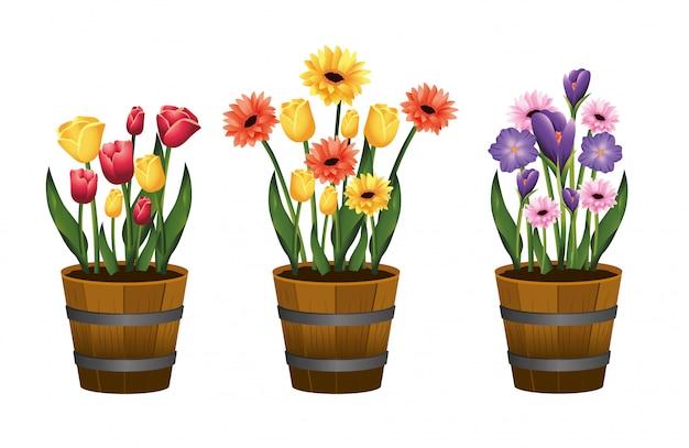 Stel schoonheid bloemen planten met bladeren in bloempot