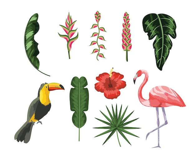 Stel toekan met flamingo en tropische bladeren