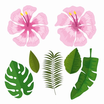 Stel tropische bloemen met takken bladeren