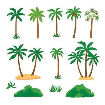 Stel tropische palmbomen in met groen blad en struiken.