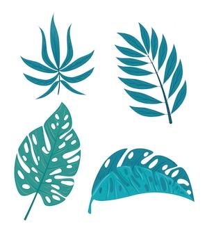 Stel tropische takken met jungleplanten in