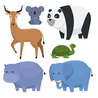 Stel wilde dieren in op fauna-cratures