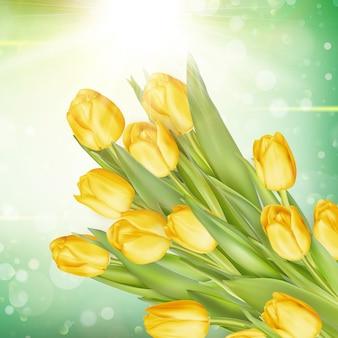 Stelletje verse gele tulpen.
