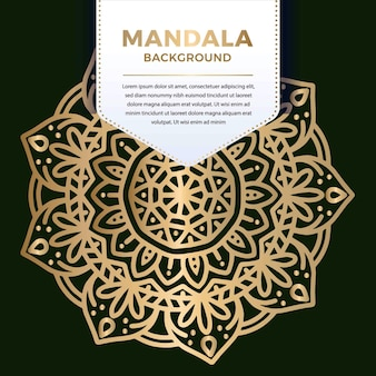 Stervorm luxe sier mandala patroon ontwerp in gouden kleur illustratie