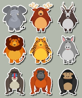 Sticker ontwerp met veel wilde dieren